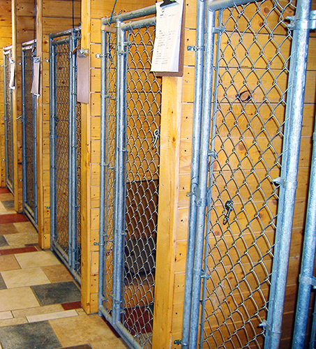 Cedar Run Pet Lodge Rooms